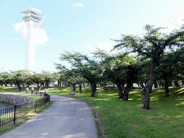 堀の外側の遊歩道と五稜郭タワー