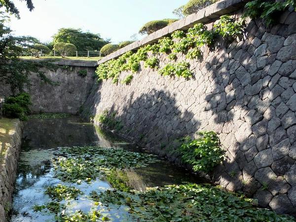 本塁石垣と内堀