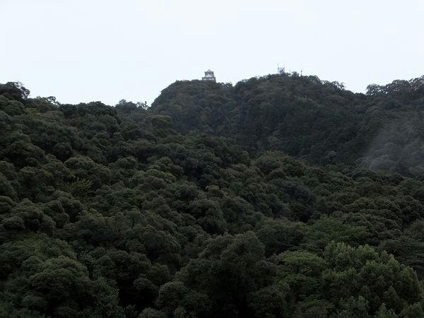金華山と復興天守