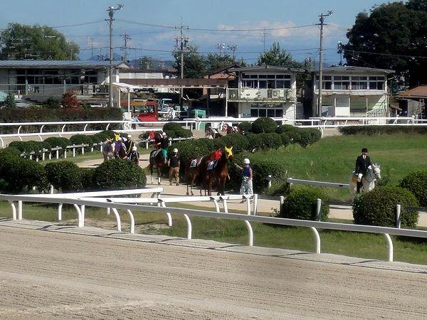 装鞍所からパドックに向かう競走馬