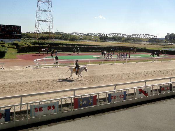整列する騎手達と入場する誘導馬