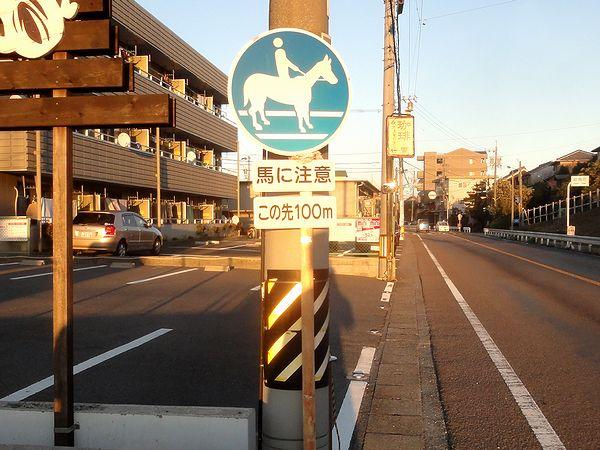 競馬場近くにある馬横断注意の看板