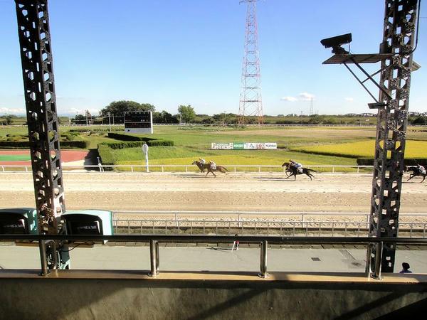 中央スタンドから見たコース内の田んぼと高圧鉄塔