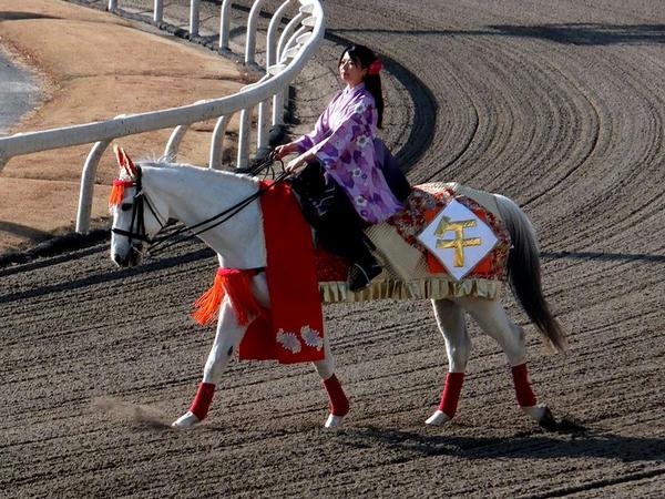 お正月仕様の誘導馬