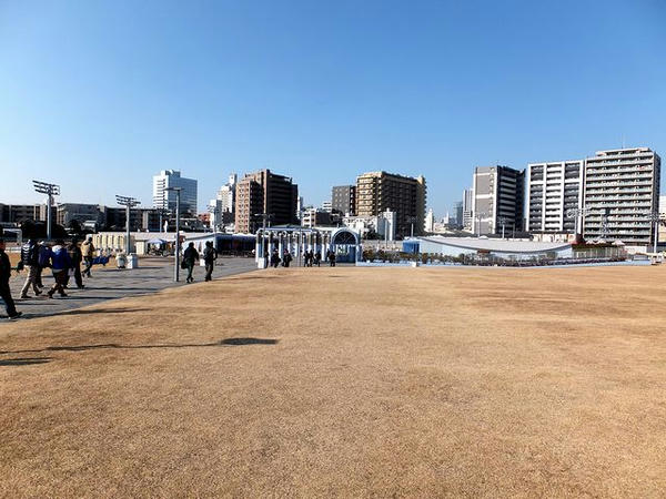 馬場内の芝生広場