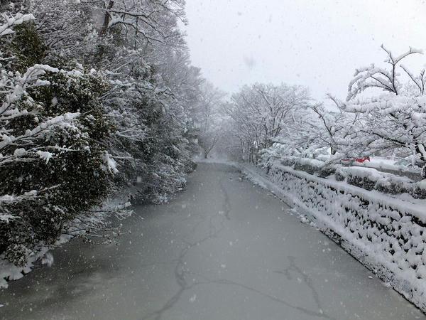 神橋から見た水堀(2)