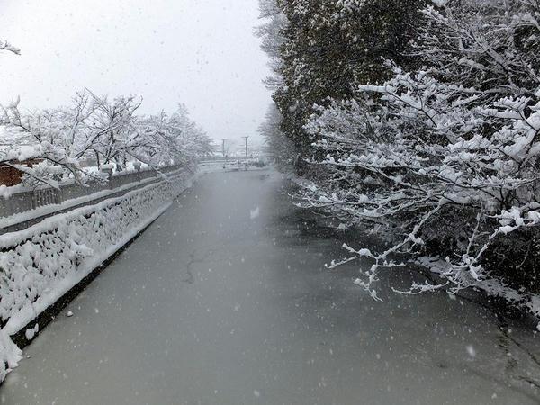 神橋から見た水堀(1)