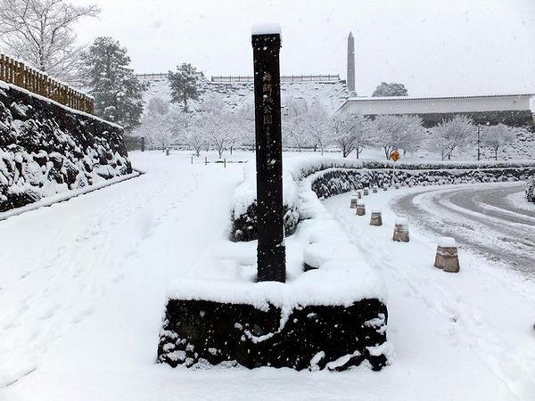 雪の舞鶴城公園