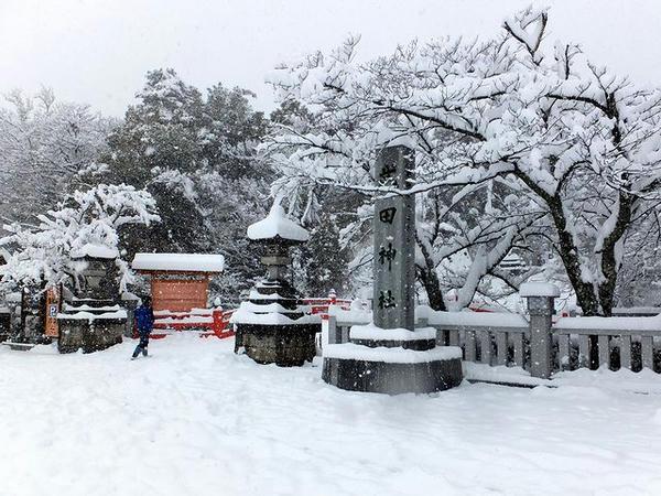 雪の武田神社
