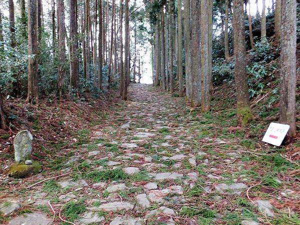 箱根旧街道の石畳