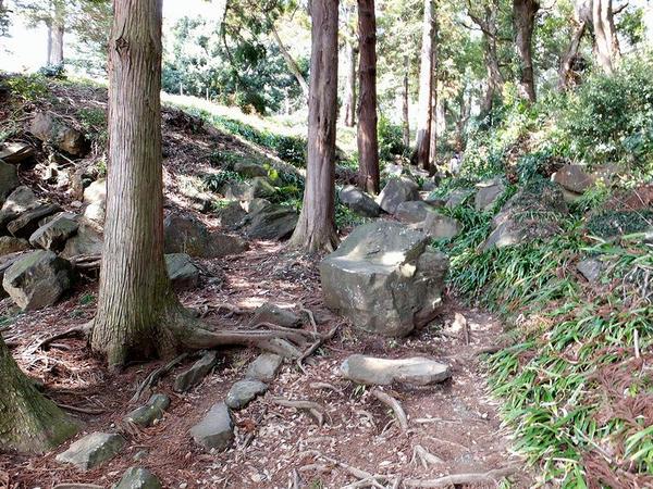 石の転がる道
