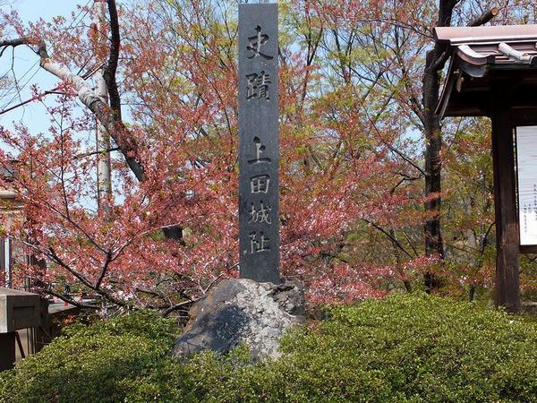 史蹟 上田城址の石碑