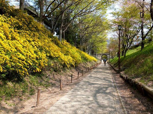 現在は遊歩道「けやき並木遊歩道」になっている線路跡