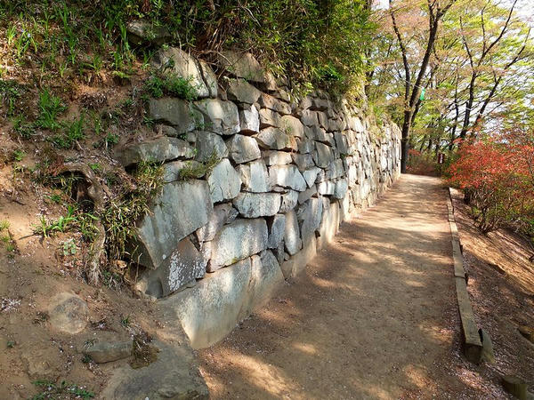 西櫓台の石垣と石段その2