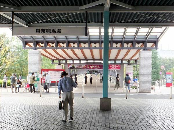 府中競馬正門前駅に接する東京競馬場の入口