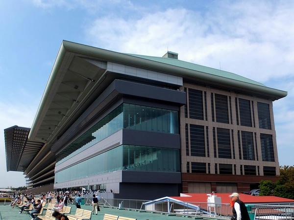 巨大な東京競馬場のスタンド