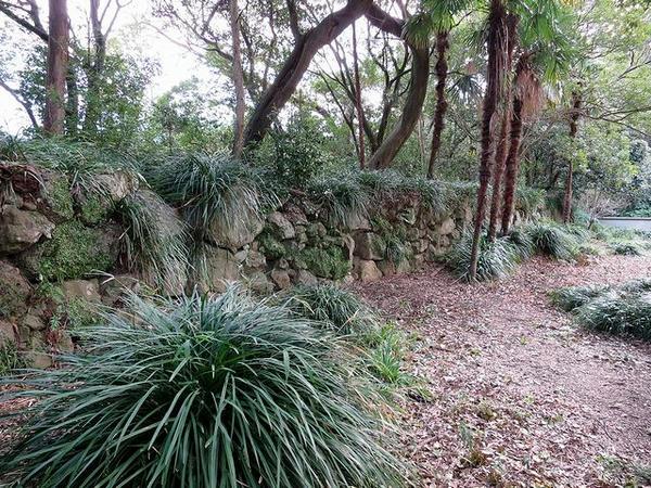 藤兵衛丸外周の石垣