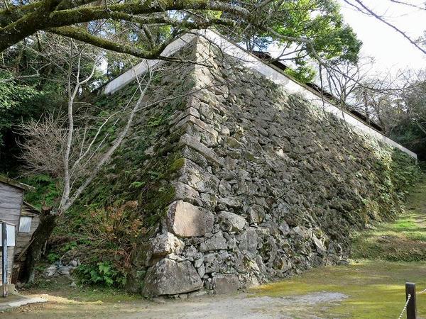 長門丸から見た藤兵衛丸石垣