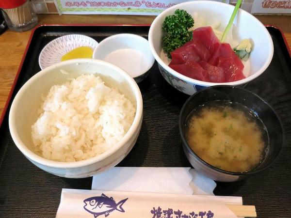 極カツオ刺身定食 800円