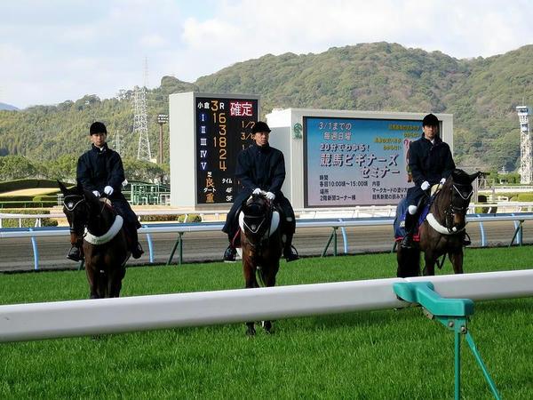 誘導馬と着順掲示板、ターフビジョン