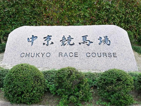 中京競馬場の石碑