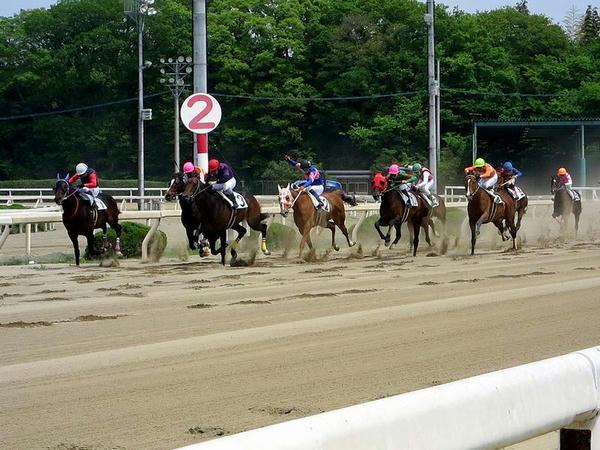 第3レース最後の直線