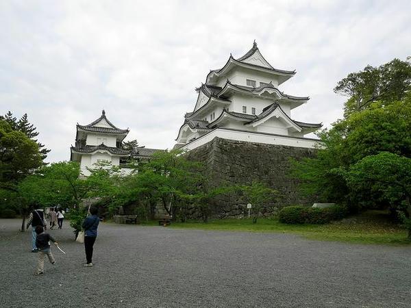 上野城本丸と復興天守
