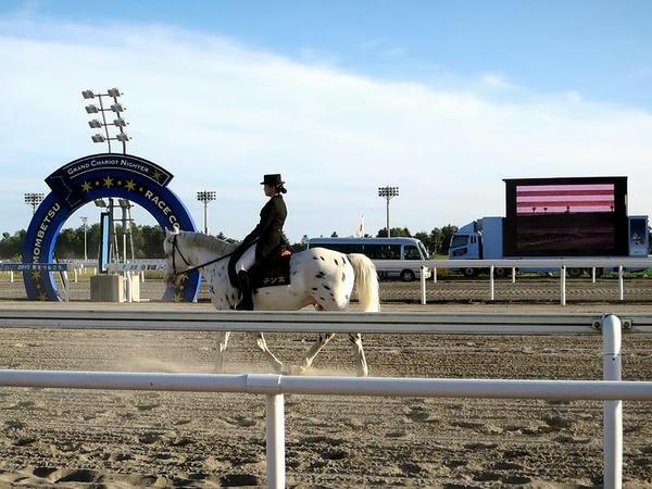 ゴール板と大型モニターと誘導馬のテン太さん