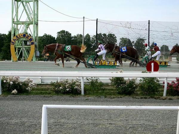 最後の直線(第3レース)