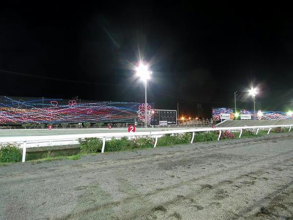 レース前のイルミネーション