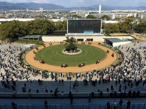 円形が特徴的な京都競馬場のパドック