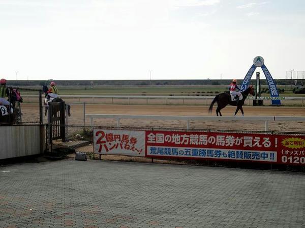 馬場入りする競走馬