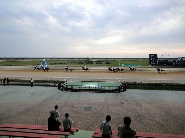 屋外観覧席から見た最終レースの風景