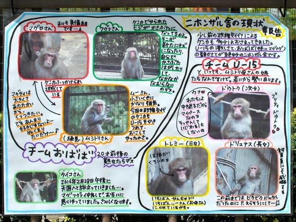 猿舎の現状の説明