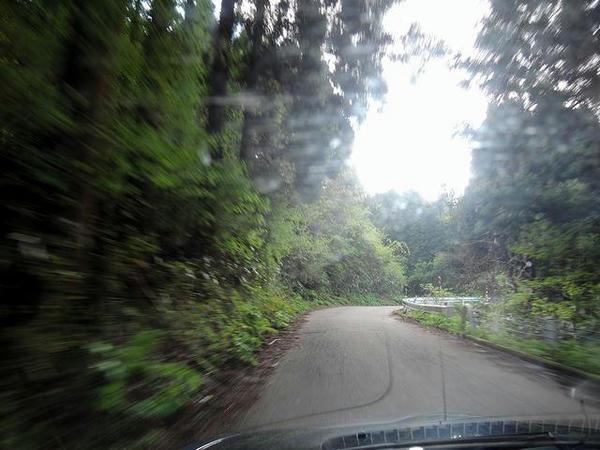 途中の山道