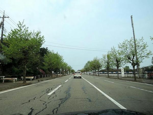 競馬場付近の一般道