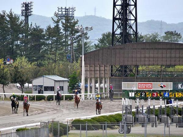 待機所からゲート裏に移動する競走馬(第5レース)