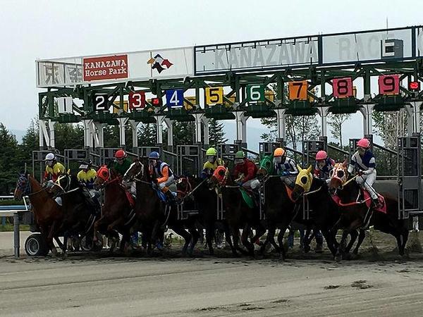 発馬する競走馬