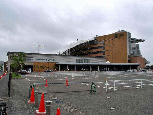 駐車場から見た新潟競馬場