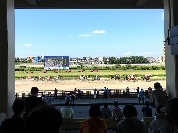 2号スタンドから見た第9レースの風景