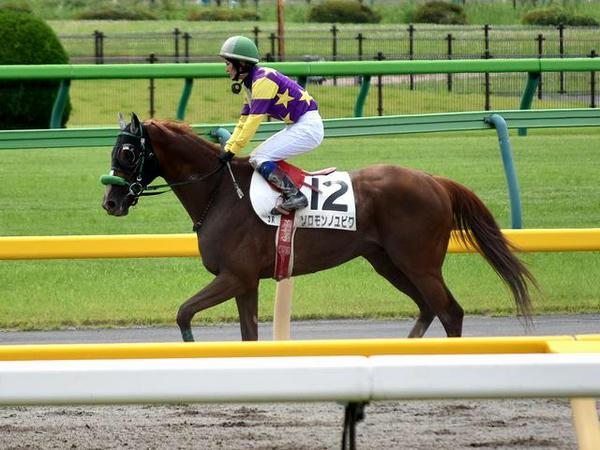 第3レースで馬場入りする藤田騎手