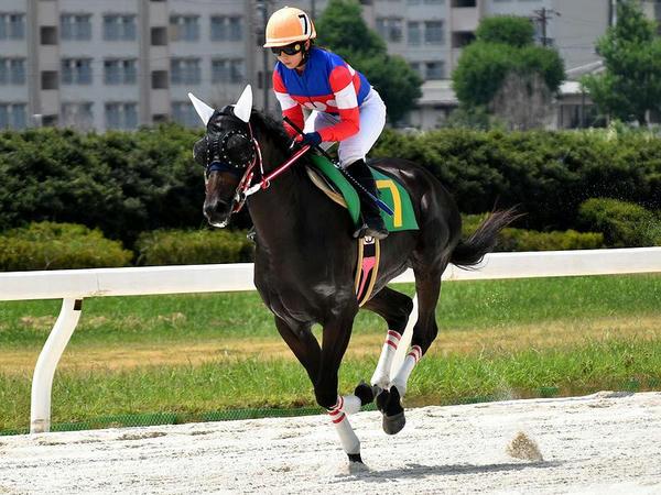 返し馬に入る木之前騎手(第3レース)