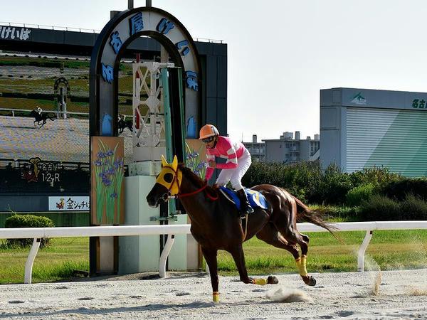 1位入線する岡部騎手(第12レース)