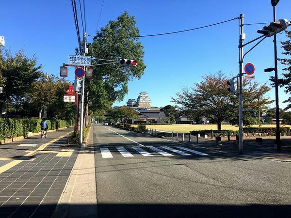 白鷺中学校東側の通り