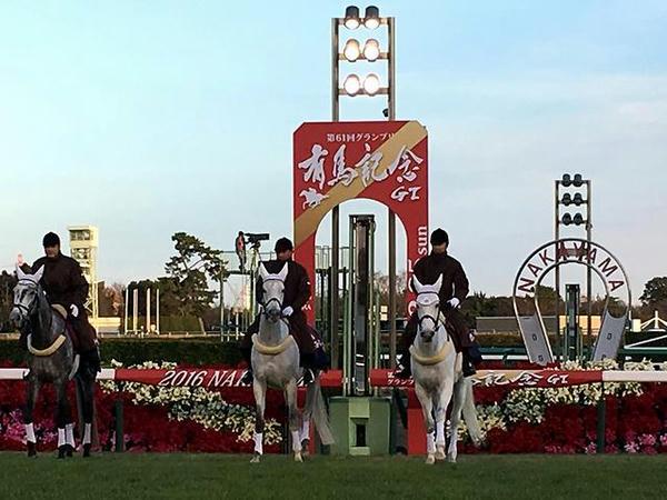 誘導馬とゴール板(第12レース)