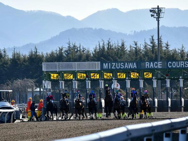 第2レース(1300m)のスタート
