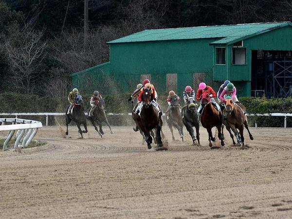 第10レースの最終コーナーを回る競走馬