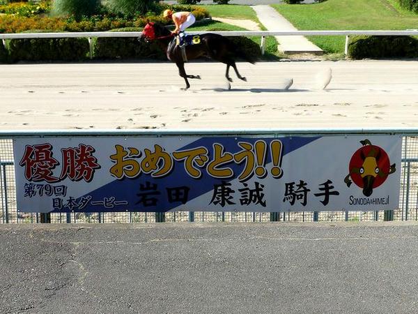 「第79回日本ダービー優勝おめでとう!!岩田康誠騎手」の横断幕