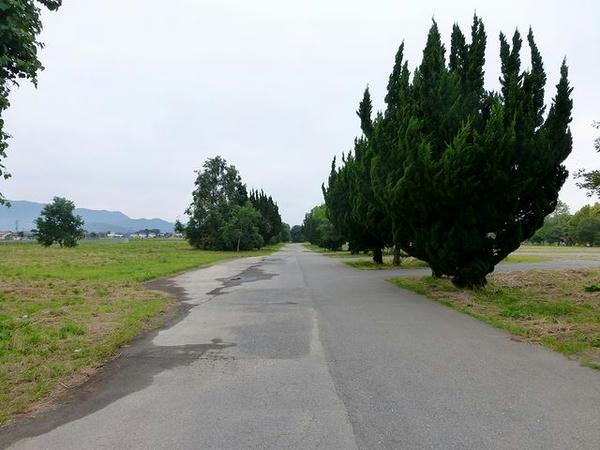 入口付近から奥へと続く道路