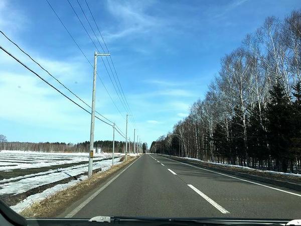 残雪の畑と白樺の中を